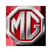 MG Servicing
